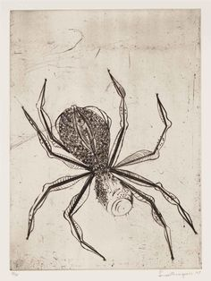 Louise Bourgeois (Spider, drypoint on vellum,  (1995)