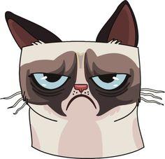 Grumpy-cat-vinyl-car-van-decal-sticker