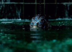 The Creature / The Shape of Water
