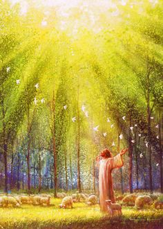 Light of His Love picture of jesus christ standing with outstretched arms in a field of sheep with a flock of birds flying over himpicture of jesus christ standing with outstretched arms in a field of sheep with a flock of birds flying over him Jesus Art, God Jesus, Jesus Christ Drawing, Jesus Christ Painting, Image Jesus, Pictures Of Jesus Christ, Lds Art, Jesus Christus, Prophetic Art