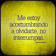 No interrumpas por favor The Words, More Than Words, Cool Words, Happy End, Quotes En Espanol, Spanish Quotes, How I Feel, Rupaul, Sentences