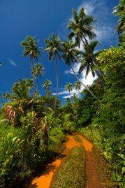 Yaté Nouvelle Caledonie
