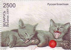 Belarus - 2009