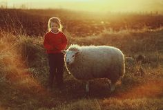 petitpoulailler: sweetlysurreal: Sheep by HappyKootie Lord Is My Shepherd, Sheep And Lamb, Vegan Animals, Create Photo, Farms Living, All Gods Creatures, Portrait Inspiration, Baby Animals, My Books