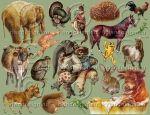 Grab Bag Miscellaneous Animals nr001