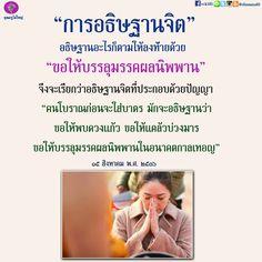 Buddha Quote, Happy Life, Personal Development, Love Quotes, Meditation, Spirituality, Knowledge, Wisdom, Positivity