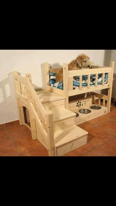 Cool dog bed. Stairs up to the loft bed lookout and food bowls below.
