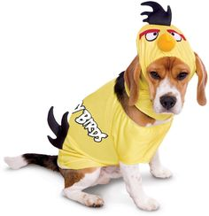 rovio angry birds yellow bird pet costume | (small)