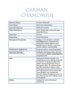 Feature Friday: German Chamomile