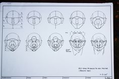 Photo: Head proportion 1A Based on the Reilly method. #anatomy #headproportion #reillymethod #drawing