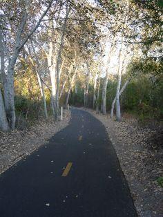 The Bob Jones Trail in Avila Beach, CA