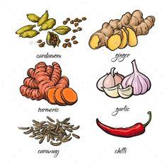 Indian Illustration, Kawaii Illustration, Botanical Illustration, Food Logo Design, Food Packaging Design, Logo Food, Sketch Notes, Sketch A Day, Spice Logo
