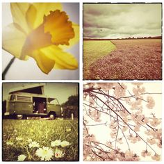 Spring is in the air  collection of 4 5x5 spring by matthewbull, $25.00