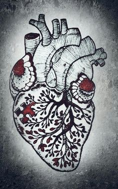 Heart different