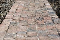 Monty Don reveals how to build a beautiful brick garden path, with tips on the materials to use, in this video guide from BBC Gardeners' World Magazine. Brick Garden Edging, Brick Pathway, Garden Paving, Lawn Edging, Garden Paths, Garden Trellis, Garden Structures, Lawn And Garden, Garden Beds