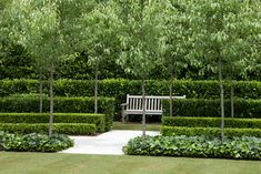 Peter Fudge Gardens have created a severely disciplined garden, based on formal geometric principles and evoking French formal gardens. French Formal Garden, Formal Garden Design, Formal Gardens, Outdoor Gardens, Australia Landscape, Garden Hedges, Terrace Garden, Garden Pool, Pyrus