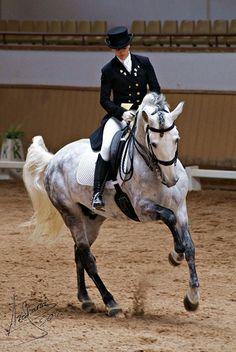 Ik vind het zo mooi om te zien! De samenwerking tussen mens en paard!!!