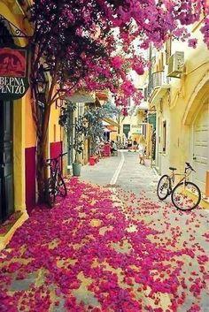 The colourful streets of Corfu, Greece. (Photo via queenzofia on Pinterest)