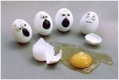 Will have to do Egg-Stensive Investigation to solve this case.