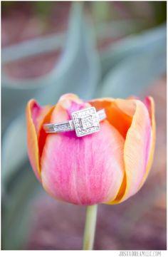 ring shot, engagement ring, ring shot tulip, freedom park engagement session, wedding photographers, charlotte north carolina. www.justadreamllc.com