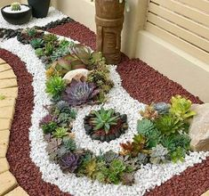 20 Ideas for Creating Amazing Garden Succulent Landscapes #succulentlandscape #succulentgarden