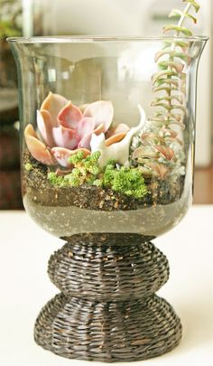 DIY Terrarium Tips [via craftgawker]