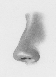 How to draw nose three quarter view  Digital painting and drawing ...
