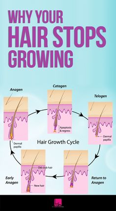 Why Your Hair Stops Growing