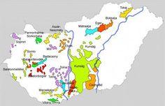 Hungarian wine regions #winevineyards
