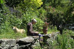 喜びは創りだすもの ターシャ・テューダー四季の庭 : 場面カット
