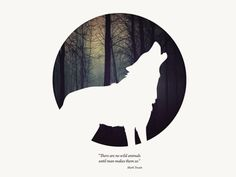 Animal wolf- really like this