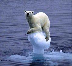Planeta de loucos: Salvem o Planeta
