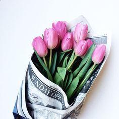 Tulips / StilettoBeats