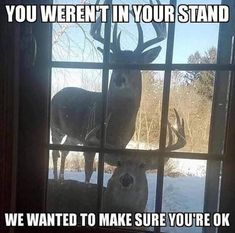 Funny Hunting Pics, Deer Hunting Humor, Hunting Jokes, Deer Meme, Funny Shit, Really Funny Memes, Haha Funny, Funny Cute, Funny Pics