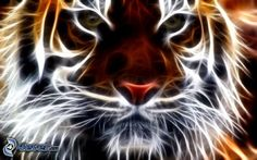 fractal-tiger,-fractal-animals-157992.jpg (674×421)