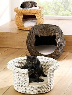 ) - Material - Sewing - Crocheting- Knitting - Weaving - Macrame - Paracord - Dream Catcher's - Jewelery - [Idea's - Inspiration - Tips & Tricks & More] - mes chats Dog Furniture, Cat Scratching Post, Decoration Originale, Unique Cats, Space Cat, Cat Supplies, White Cats, Pet Beds, Pet Gifts