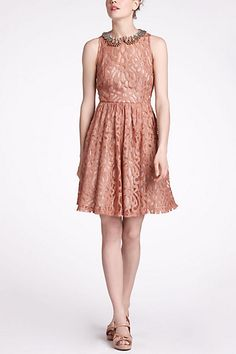 Mariposa Lace Dress #anthropologie