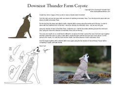 coyote pattern