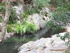 Currumbin Rock Pools photo©jadoretotravel