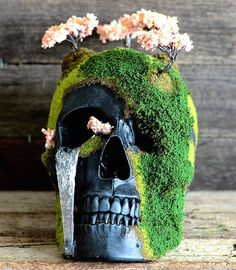 Unique Handmade Bonsai Skulls, Jack of the Dust
