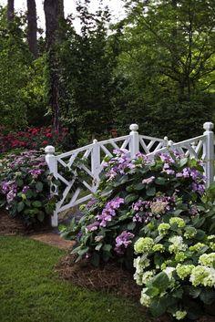 Hydrangeas with this geometric fence.