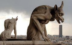 Notre Dame Gargoyles, Paris.80