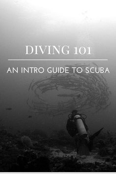 You were always intrigued by the idea of diving? But also a little scared? Read on - my diving beginners guide to get your first toe in the water.