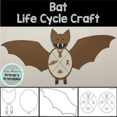 Elementary Science, Teaching Science, Science Activities, Elementary Schools, All About Bats, Cycle Pictures, Life Cycle Craft, Butterfly Life Cycle, Cut And Paste