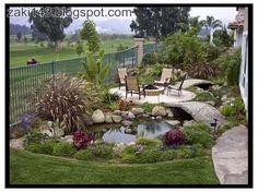 Zaki143: Water garden and backyard ponds