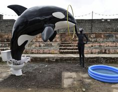 Banksy anti-SeaWorld art and scroll down for a great Cousteau quote on captive whales...
