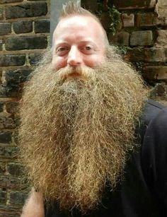 awesome beard. bearded man beards men huge epic fluffy puffy fur lion