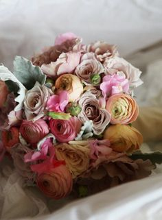 apricot and peach ranunculas, pale pink sweet pea, latte roses- julia and fik , dusty miller foliage