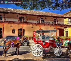 http://OkGranada.com #Follow @emilio_escapes: Colonial scenes #Granada #Nicaragua #ILoveGranada #AmoGranada #Travel #CentralAmerica #GranadaNicaragua #horse #horsecarriage