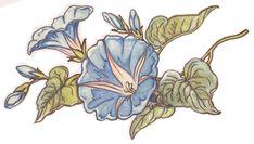 Blue Morning Glory ORIGINAL 12x16 Watercolor Painting by Melanie Pruitt $130.